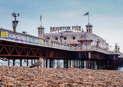 Brighton Day Trip: Sunday 19th July