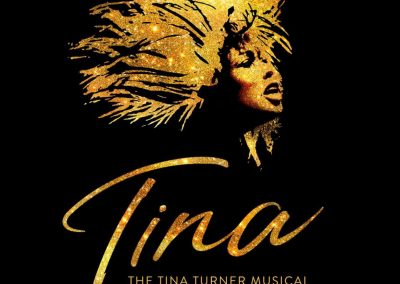 Tina Turner The Musical (evening) Monday 9th December.