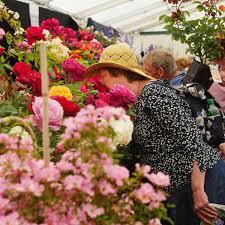 Hampton Court Palace Flower Show: Sunday 11th July