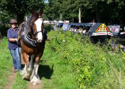 Horse-Drawn Canal Cruise & Lunch: Friday 15th May.