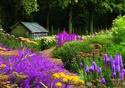 Sussex & The Prairie Garden: Wednesday 30th June.